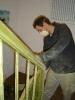 Arbeitseinsatz März 2004
