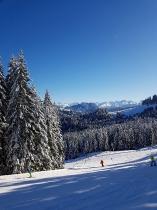Schneesafari 2020